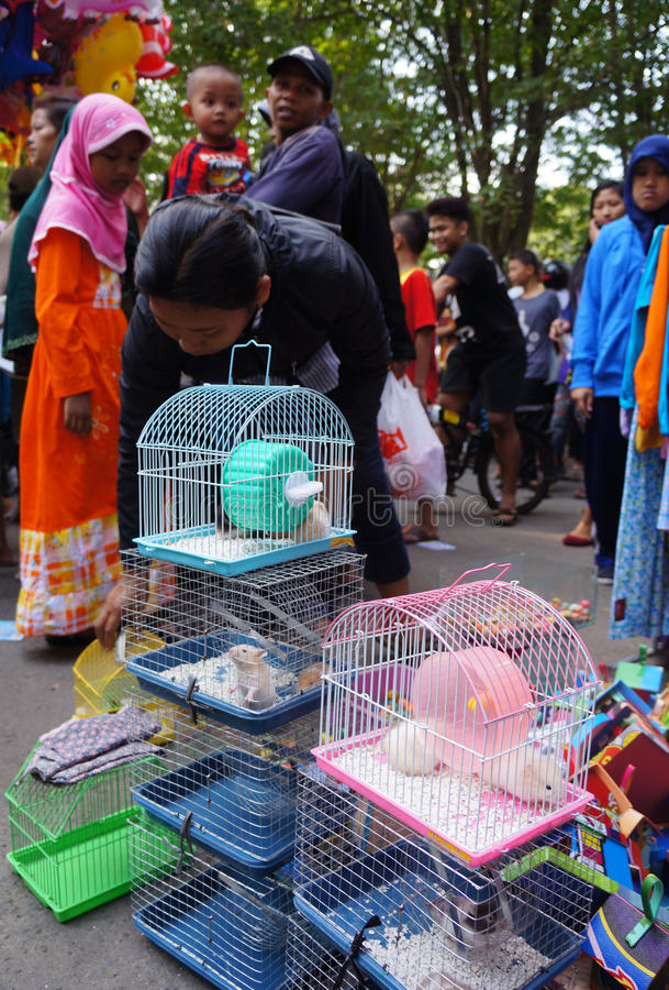 Download Hamster editorial photo. Image of selling, pets, city - 43195561