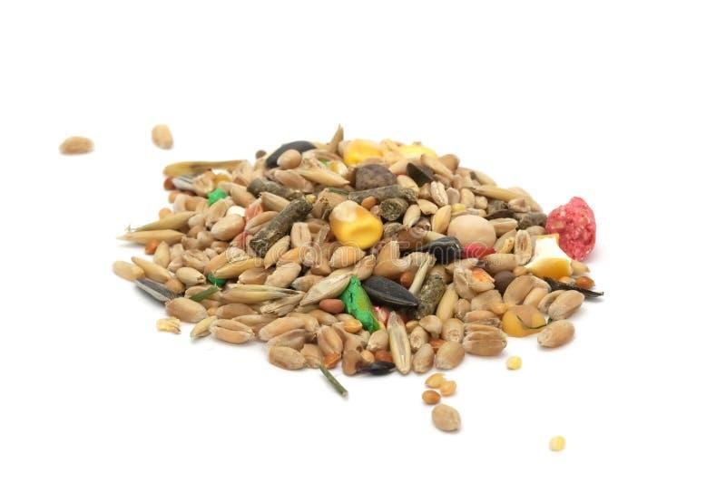 Hamster-Nahrungsmittelmischung stockbild