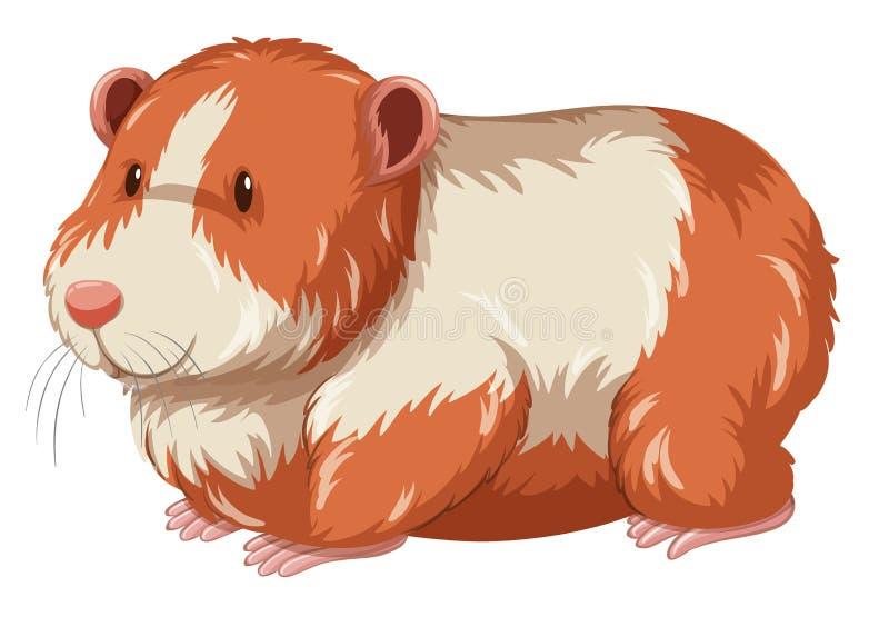 Hamster peludo com cara feliz ilustração stock