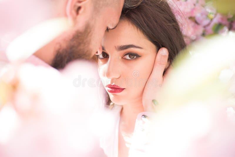 Han är absolut min Den sinnliga kvinnan tycker om intimitet med mannen Förälskad kram för par bland att blomstra träd Skincare oc royaltyfri foto