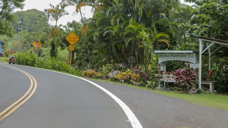 HANA, DIE VEREINIGTEN STAATEN VON AMERIKA - 8. JANUAR 2015: pov schoss vom Straßenrandstall auf Mauis berühmter Straße zu Hana lizenzfreie stockfotografie
