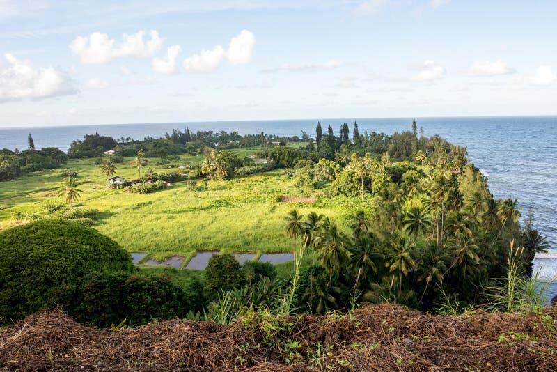 Hana, Hawaii. Maui, Hawaii, with a view of the ocean royalty free stock image