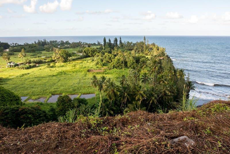 Hana, Hawaii. Maui, Hawaii, with a view of the ocean royalty free stock photos