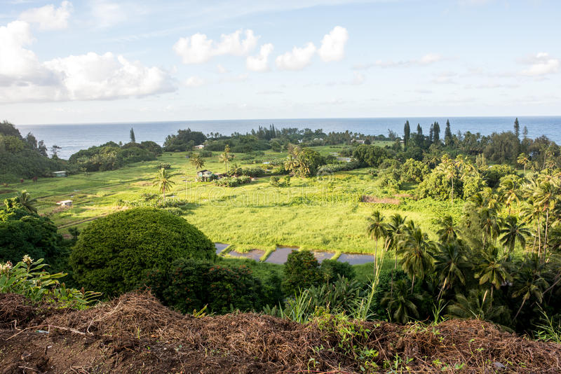 Hana, Hawaii. Maui, Hawaii, with a view of the ocean royalty free stock images