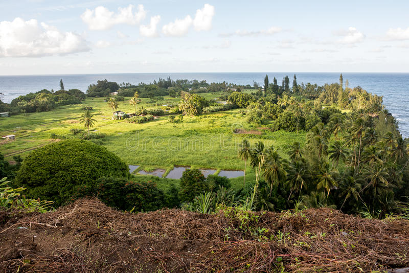 Hana, Hawaii. Maui, Hawaii, with a view of the ocean stock photos