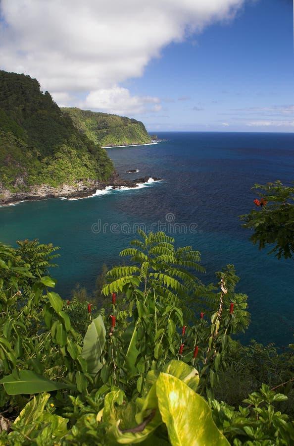 Hana Küste-Maui HI lizenzfreie stockfotografie