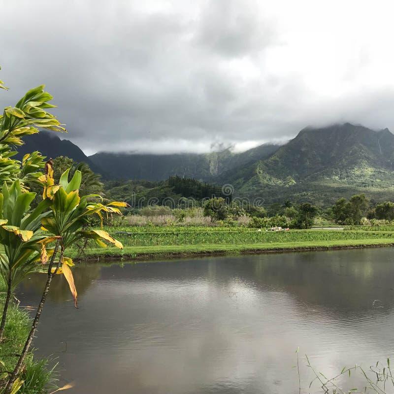 Hanalei海湾,考艾岛,夏威夷,美国 免版税图库摄影