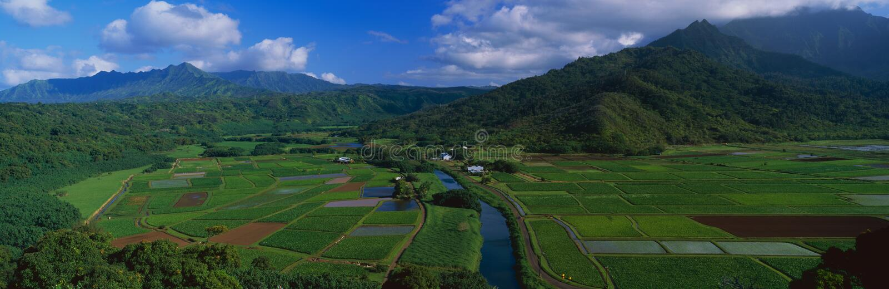 Hanalei谷俯视 图库摄影