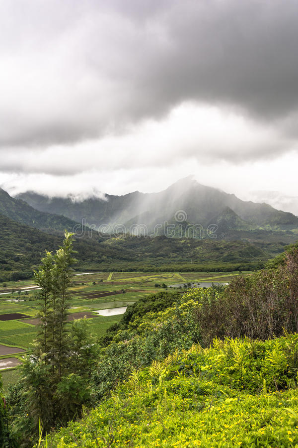 Hanalei谷监视在考艾岛,夏威夷 库存图片