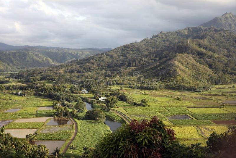 Hanalei谷,考艾岛,夏威夷 免版税库存照片