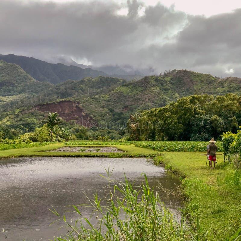 Hanalei,考艾岛,夏威夷,美国 库存图片