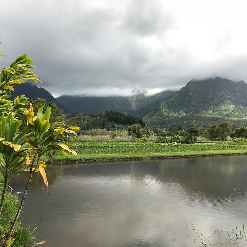 Hanalei Bay, Kauai, Hawaii, USA royalty free stock photography