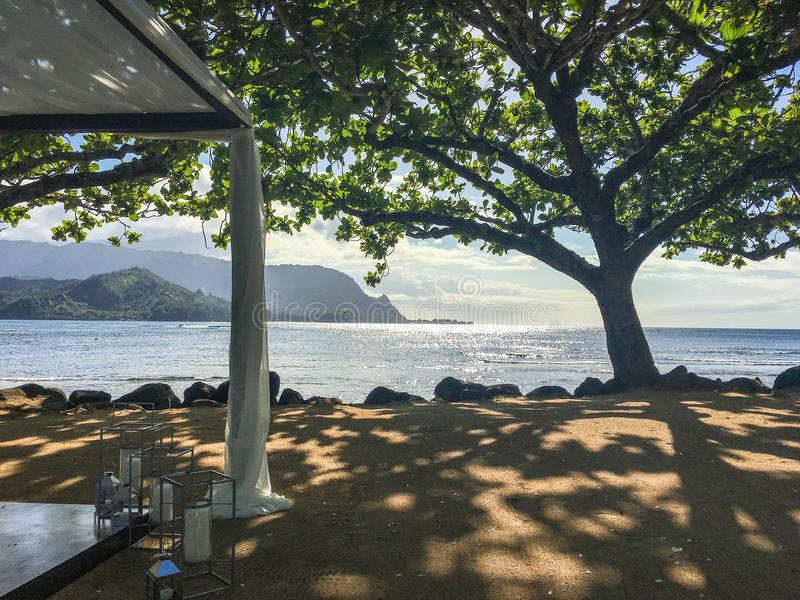 Hanalei Bay tree with Ocean and mountains beyond on Kauai. Hanalei Bay tree provides shade to tourists with the Pacific Ocean and mountains beyond on Kauai royalty free stock photography
