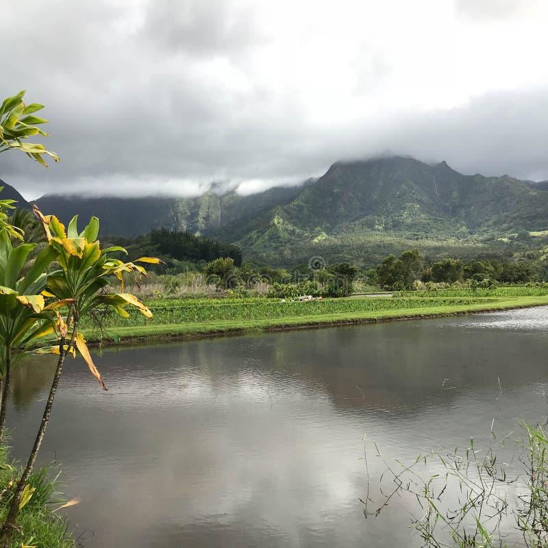 Hanalei, Kauai, Hawaï, de V.S. stock foto