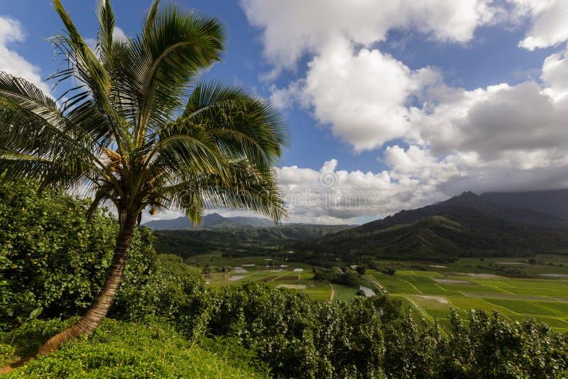 Hanalei Vally op het Eiland Kauai, Hawaï met een mooie pa stock foto