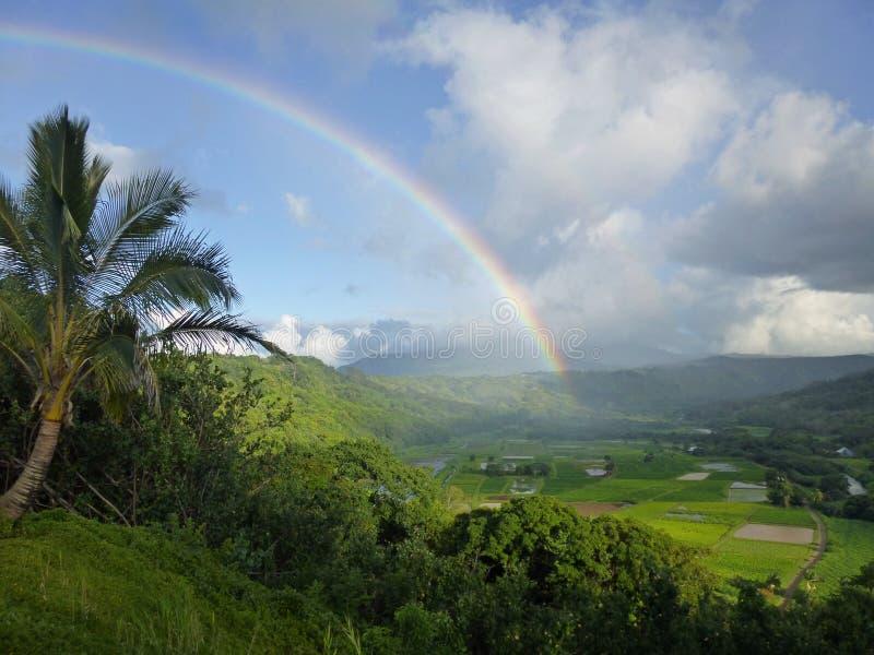 Hanaleiregenboog Kauai stock afbeelding