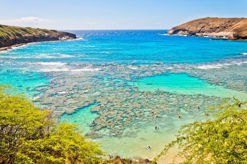Hanauma海湾,奥阿胡岛,夏威夷 免版税库存照片