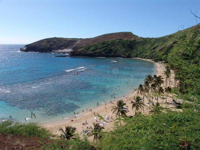 Hanauma Bay on Hawaii royalty free stock images