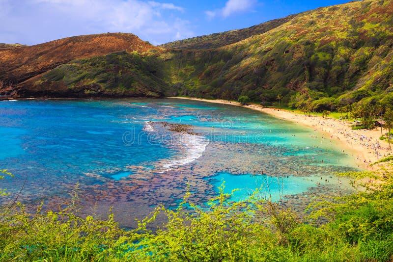 Hanauma Bay, Oahu, Hawaii stock photography