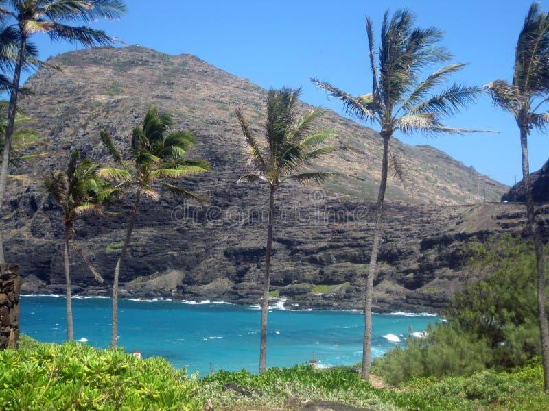 Hanaumabaai, Hawaï royalty-vrije stock fotografie