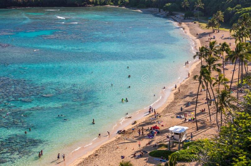 Hanaumabaai, Oahu, Hawaï stock afbeelding