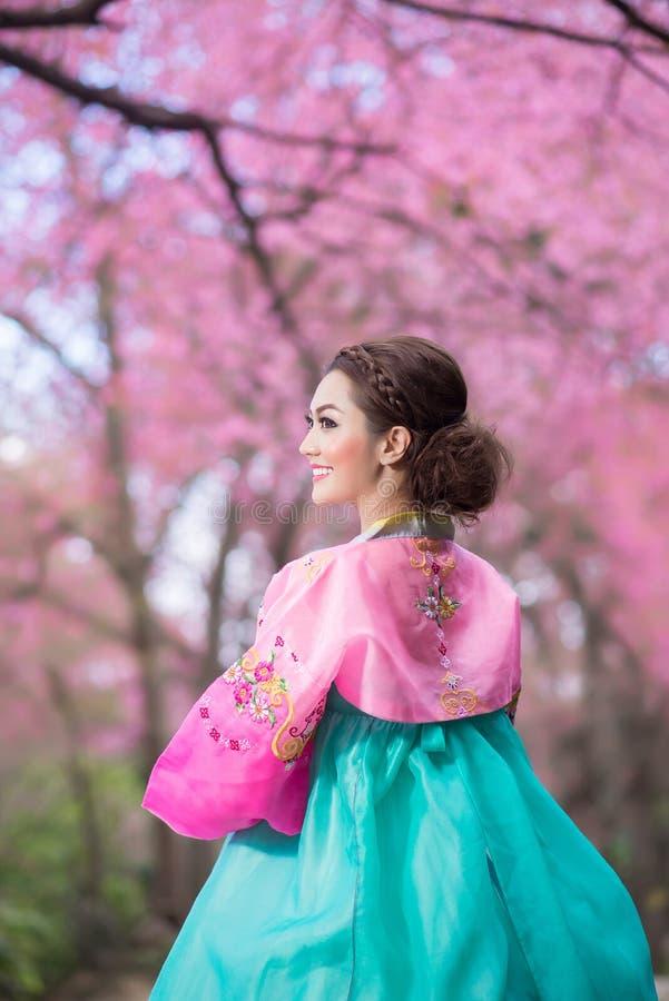 Hanbok: il vestito coreano tradizionale e la bella ragazza asiatica con sakura fotografie stock libere da diritti