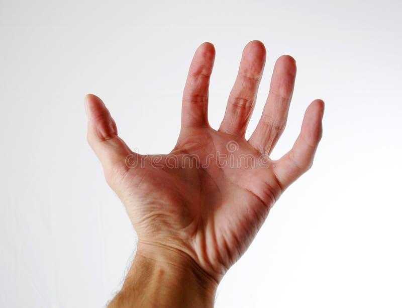 Hand - 1 stock photography