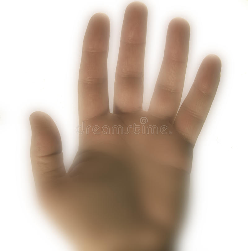 Download Hand stock image. Image of large, isolated, body, part - 16933881