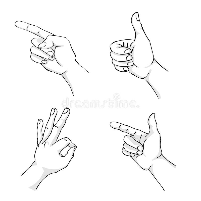 Hand. 4 positions of the hand vector illustration