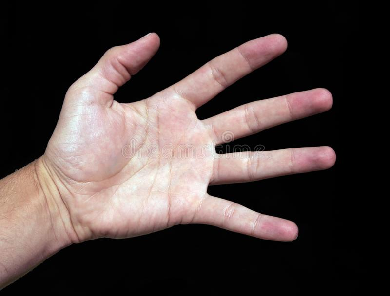 Hand stock images