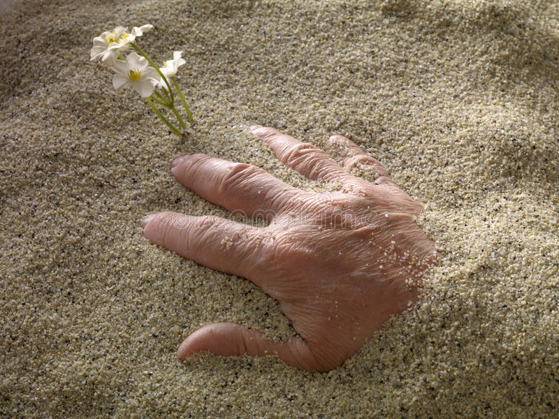 Download Hand stock image. Image of hand, sand, sorrow, death - 26310885
