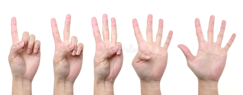 1 hand 2 3 4 5 royalty-vrije stock afbeelding
