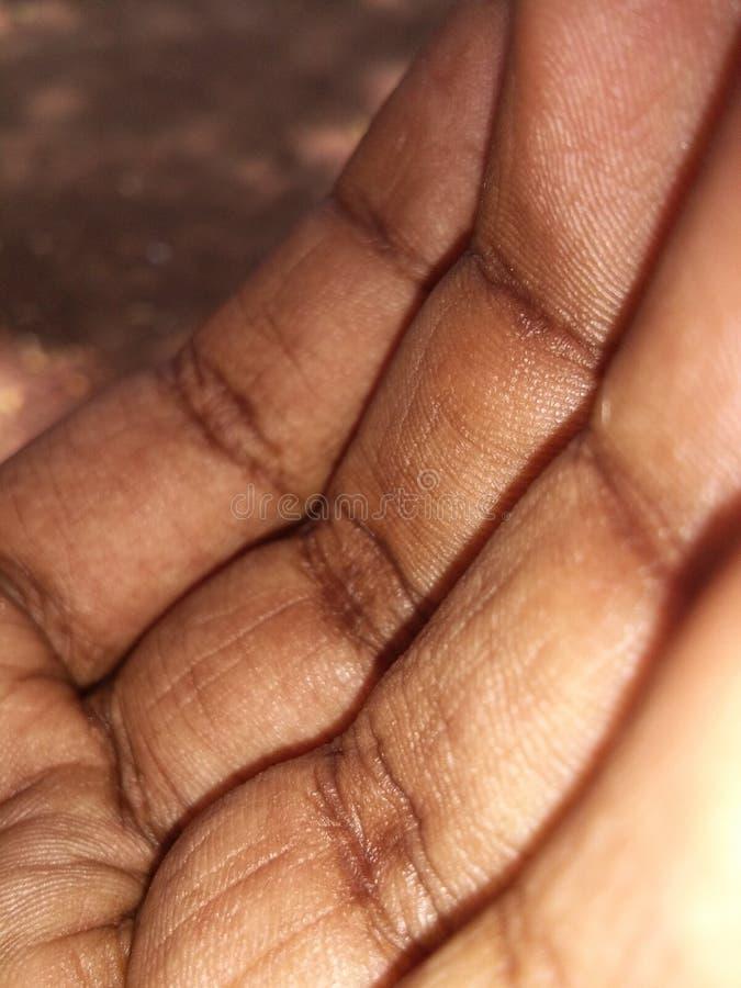 Hand arkivfoto