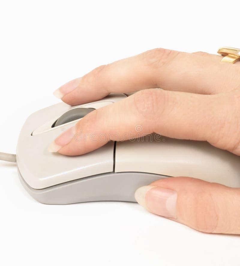 Hand aan muis stock foto