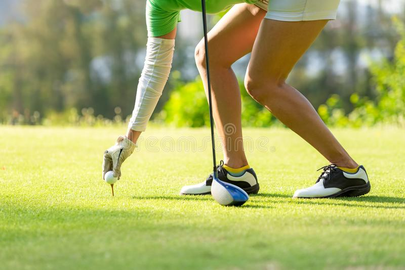 Hand asian sporty woman putting golf ball on tee with club in golf course on evening on time for healthy sport. royalty free stock photo