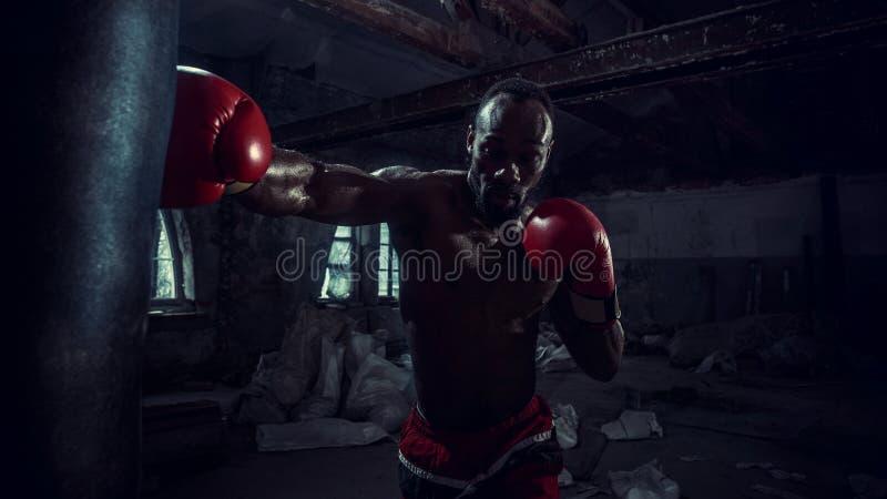 Hand av boxaren över svart bakgrund Styrka-, attack- och rörelsebegrepp arkivbilder