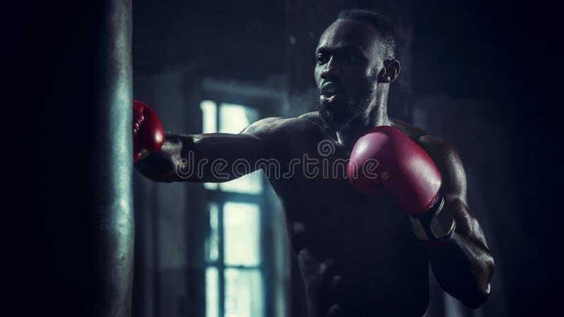 Hand av boxaren över svart bakgrund Styrka-, attack- och rörelsebegrepp fotografering för bildbyråer