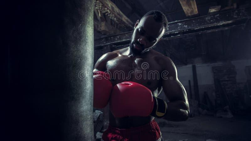 Hand av boxaren över svart bakgrund Styrka-, attack- och rörelsebegrepp arkivfoton