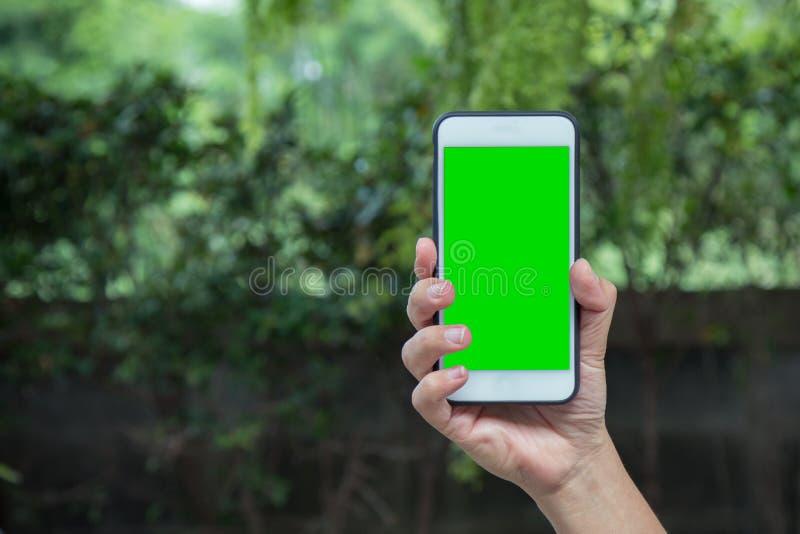 Hand av den smarta telefonen för smart mobil för man hållande med den gröna skärmen arkivfoto
