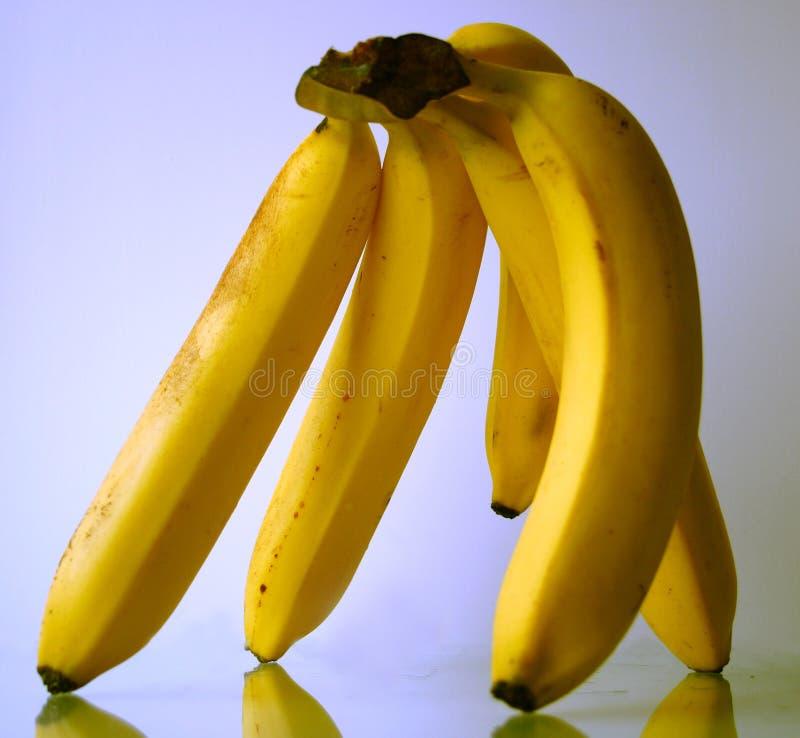 Hand of bananas stock photos