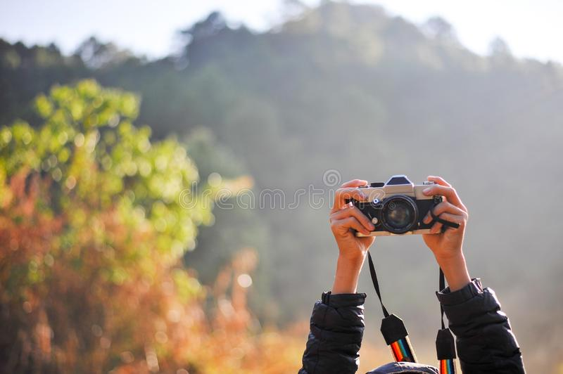 Hand and camera of the photographer in the forest. His love of p stock images