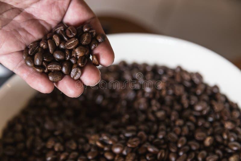 In hand de bonen van de koffie stock afbeelding
