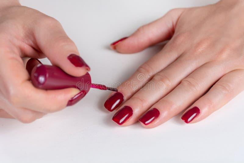 Hand der jungen Frau, die dunkelrote Nagellackfarbe auf ihrem Finger mit der Bürste auf weißem Schreibtisch anwendet stockfotos