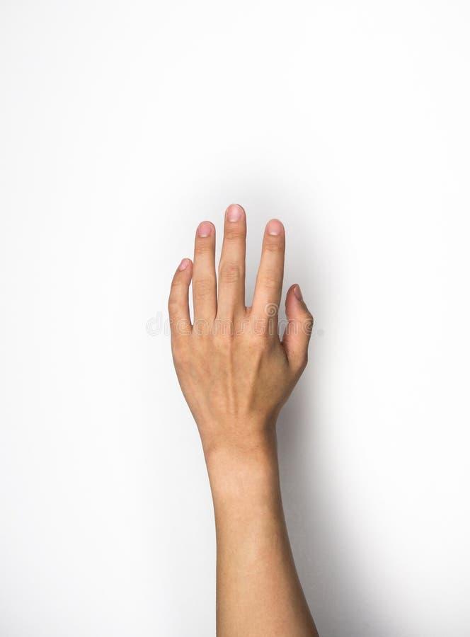 Hand, die auf weißem Hintergrund erreicht stockbild