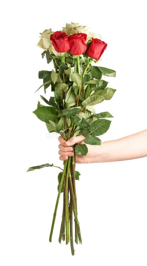 Hand, die Blumenstrauß von Rosen hält lizenzfreie stockbilder