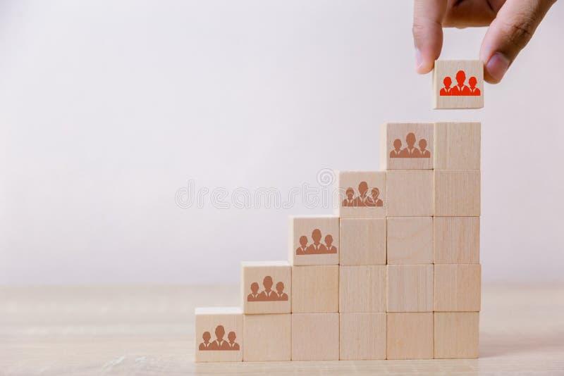Hand die de houten ladder van het kubusblok zetten aan het hoogste, menselijke middelbeheer en rekruterings het bedrijfsconcept,  stock foto's