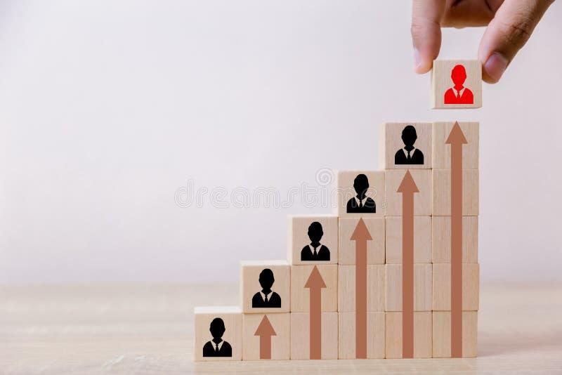 Hand die de houten ladder van het kubusblok zetten aan het hoogste, menselijke middelbeheer en rekruterings het bedrijfsconcept,  stock fotografie