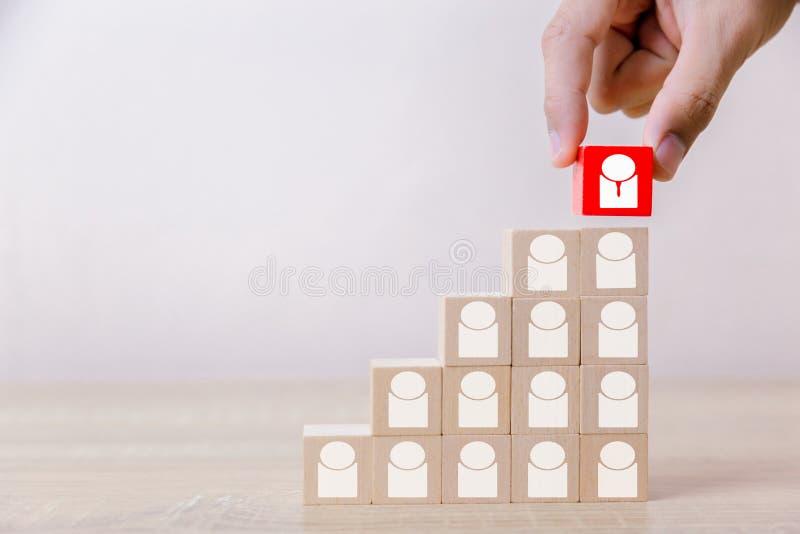 Hand die de houten ladder van het kubusblok zetten aan het hoogste, menselijke middelbeheer en rekruterings het bedrijfsconcept,  royalty-vrije stock foto