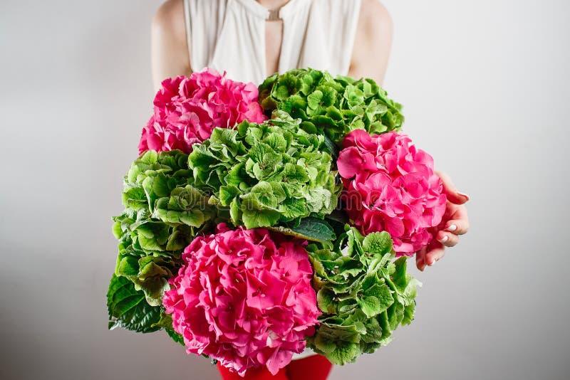 hand die een de hydrangea hortensia witte achtergrond houden van de bos groene en roze kleur Heldere kleuren wolk 50 schaduwen royalty-vrije stock afbeeldingen