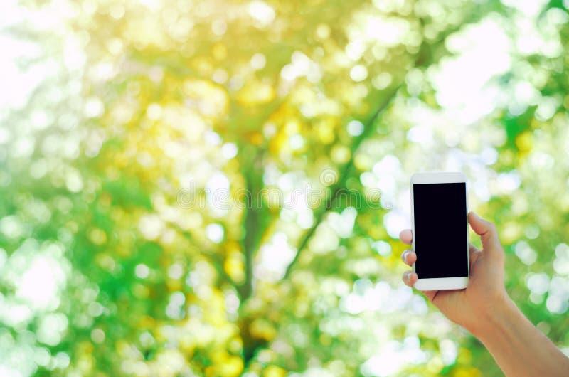 Hand die een mobiele smartphone in het park houden telefoonafhankelijkheid, sociale netwerken Het werk aangaande Internet Schrijf stock afbeelding